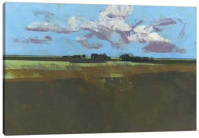 Early December Fields Canvas Art Print