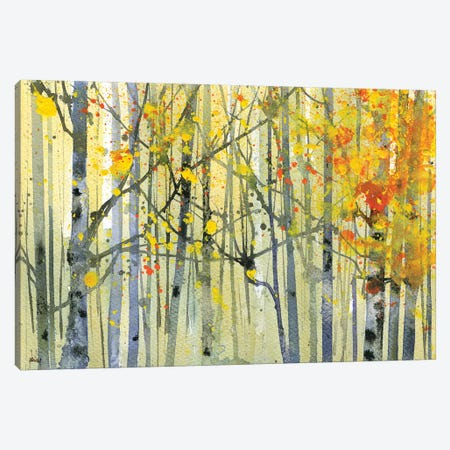 Autumn Birches Canvas Print #PBA1} by Paul Bailey Art Print