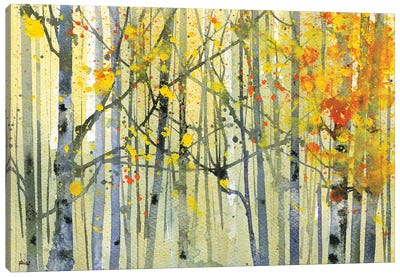 Autumn Birches Canvas Art Print