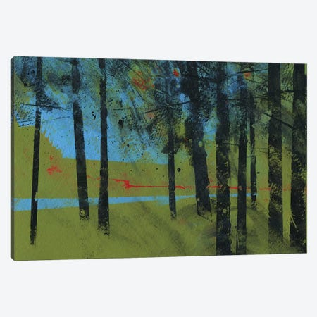 Forest Brook Canvas Print #PBA23} by Paul Bailey Canvas Print