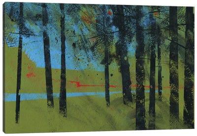 Forest Brook Canvas Art Print