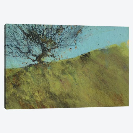 Gilfach Hawthorn Canvas Print #PBA26} by Paul Bailey Canvas Wall Art