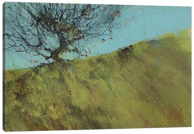 Gilfach Hawthorn Canvas Art Print