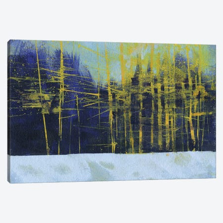 Golden Winter Pines Canvas Print #PBA27} by Paul Bailey Canvas Wall Art