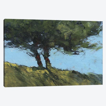 Hawthorne Duo Canvas Print #PBA29} by Paul Bailey Canvas Art Print