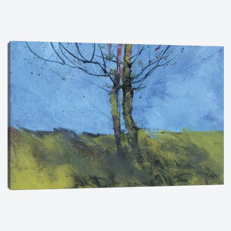 Heathland Tree Study Canvas Print #PBA30} by Paul Bailey Canvas Artwork