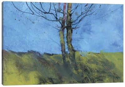 Heathland Tree Study Canvas Art Print