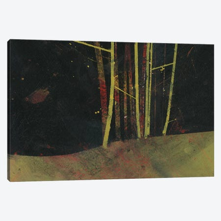 Into The Dark Wood Canvas Print #PBA31} by Paul Bailey Canvas Art