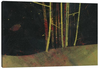 Into The Dark Wood Canvas Art Print