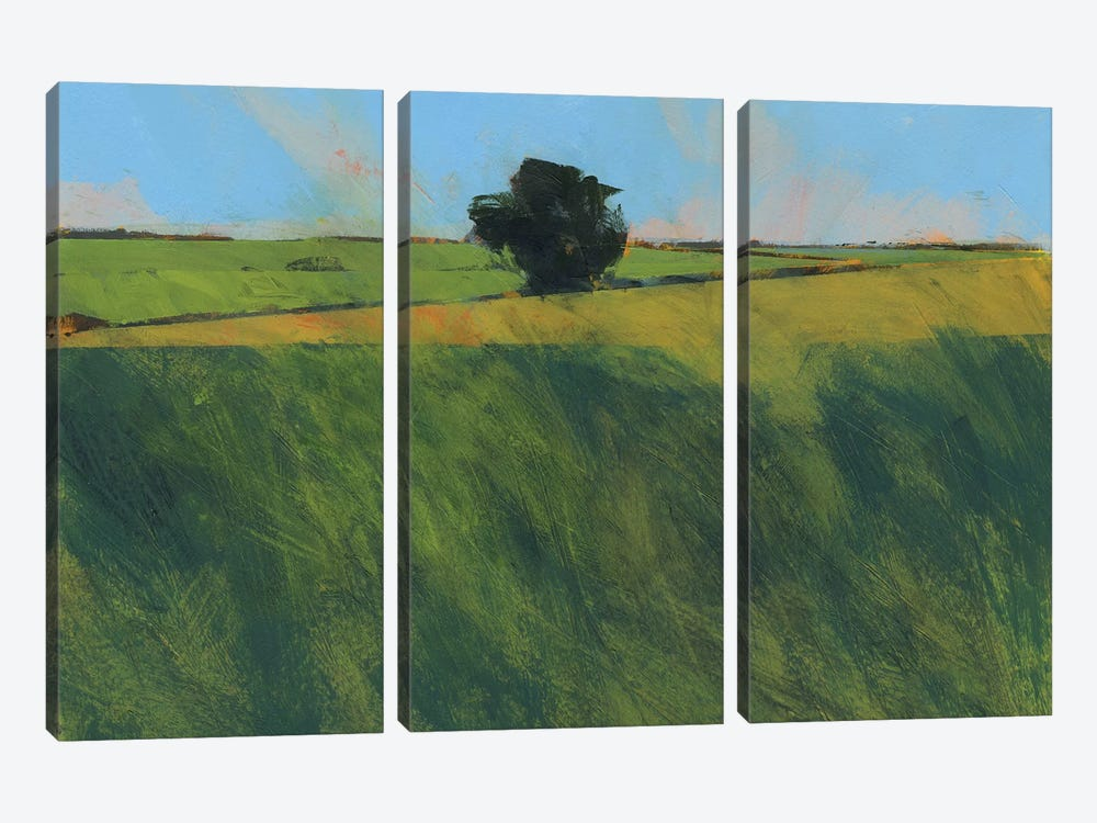 Lone Hedgerow Tree 3-piece Canvas Wall Art