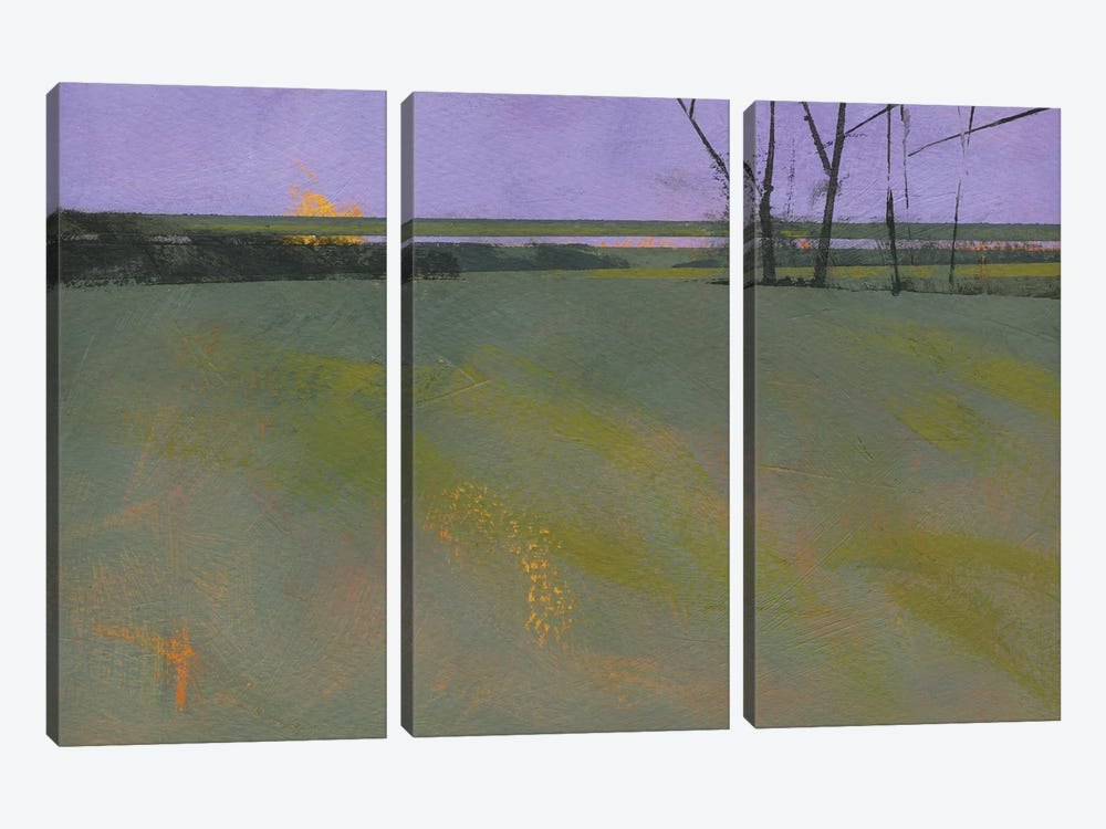 Millfields by Paul Bailey 3-piece Canvas Print
