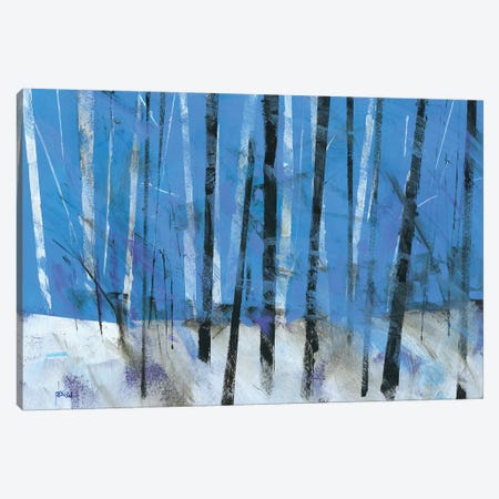 Birch & Black Ash Saplings Canvas Print #PBA3} by Paul Bailey Art Print