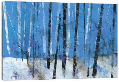 Birch & Black Ash Saplings Canvas Art Print