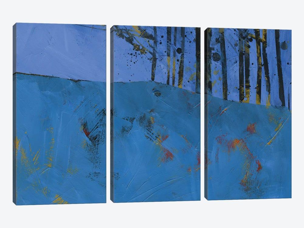 Token Trees by Paul Bailey 3-piece Canvas Artwork
