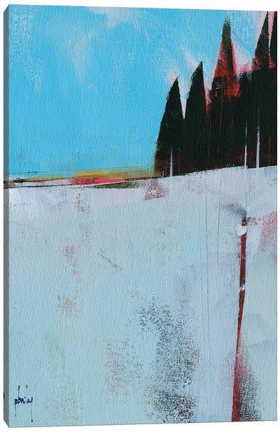 Snow Field Canvas Art Print
