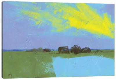 Decoy Pond Canvas Art Print