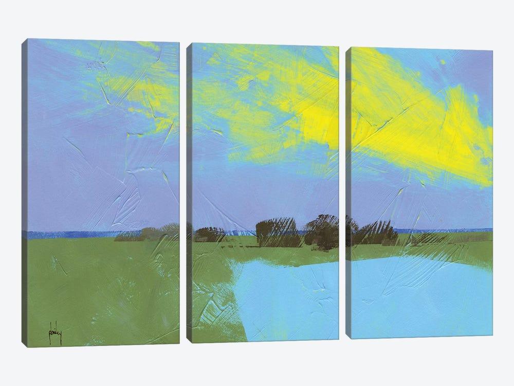 Decoy Pond by Paul Bailey 3-piece Art Print