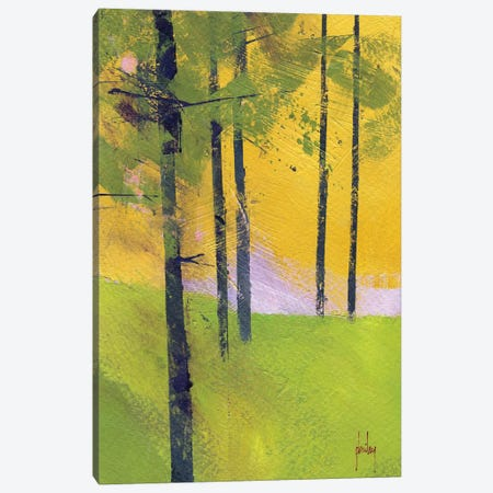 Simple Spruce Canvas Print #PBA5} by Paul Bailey Canvas Wall Art