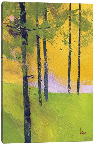 Simple Spruce Canvas Art Print
