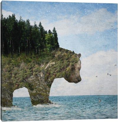 Ursidora: The Invisible Bear Island Canvas Art Print