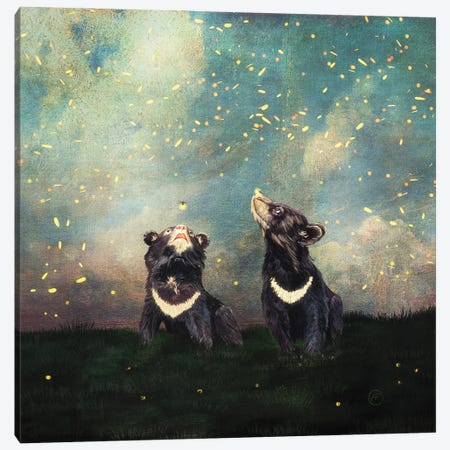 The Bear Brothers And The Firefly Show Canvas Print #PBF113} by Paula Belle Flores Canvas Wall Art