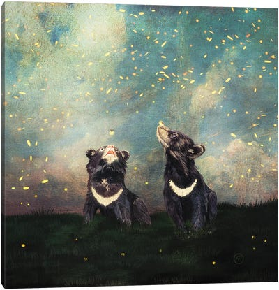 The Bear Brothers And The Firefly Show Canvas Art Print