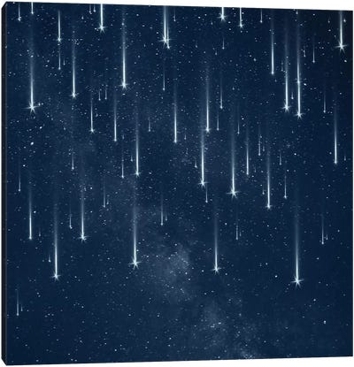 Falling Stars Canvas Art Print