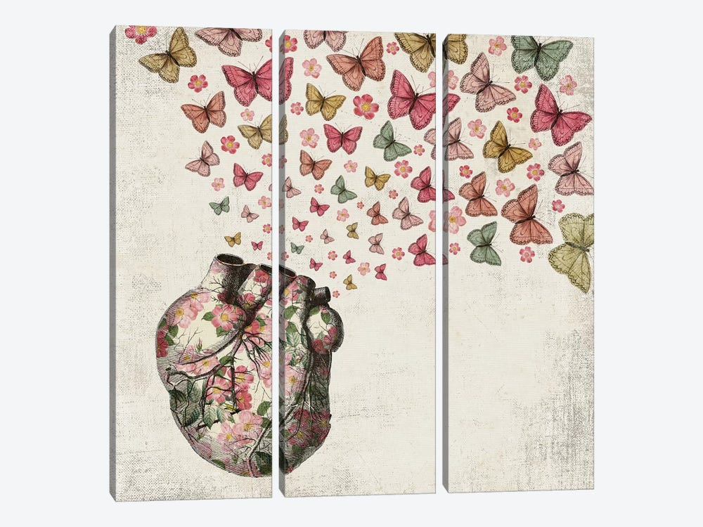 In Love: Heart And Butterfly by Paula Belle Flores 3-piece Canvas Art Print