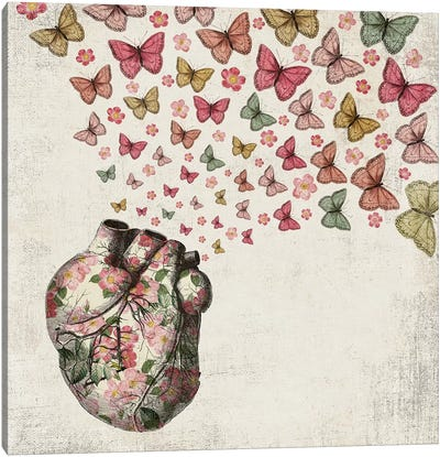 In Love: Heart And Butterfly Canvas Art Print