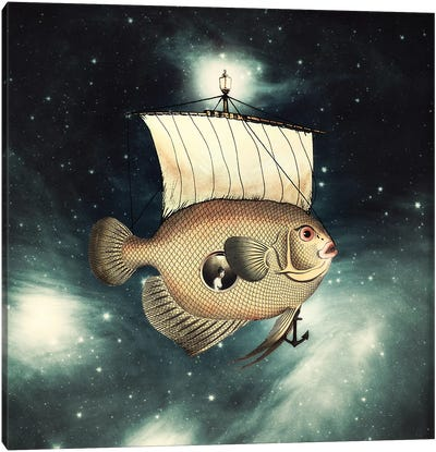 5 Weeks In A Flying Fish Canvas Art Print