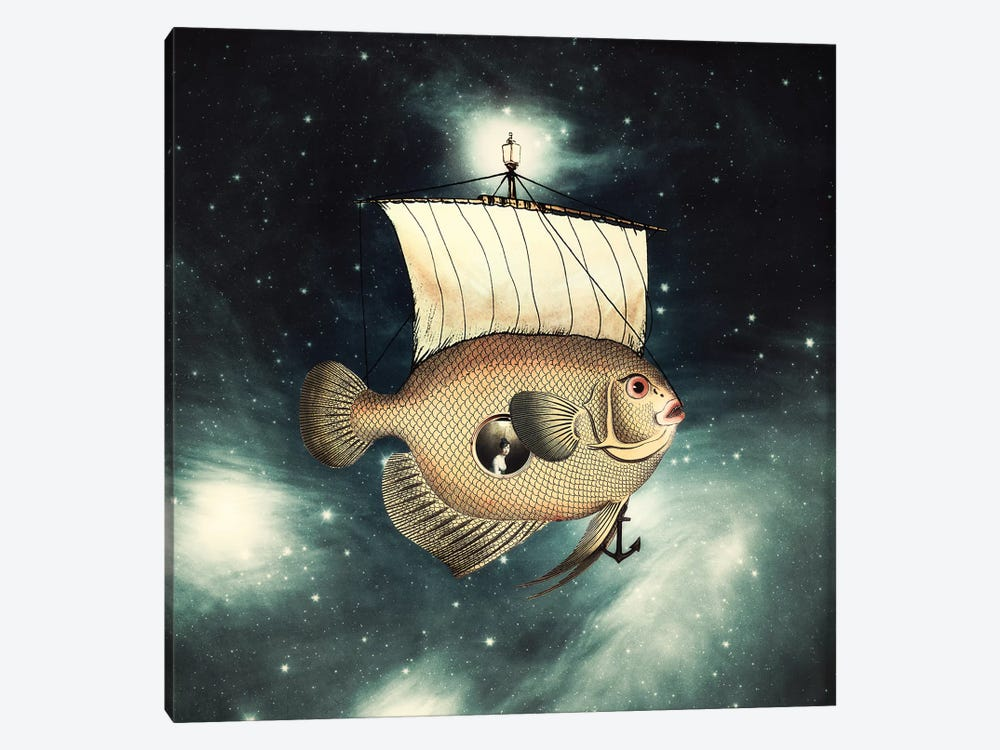 5 Weeks In A Flying Fish by Paula Belle Flores 1-piece Canvas Art Print