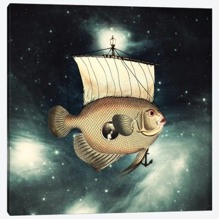 5 Weeks In A Flying Fish Canvas Print #PBF1} by Paula Belle Flores Canvas Wall Art