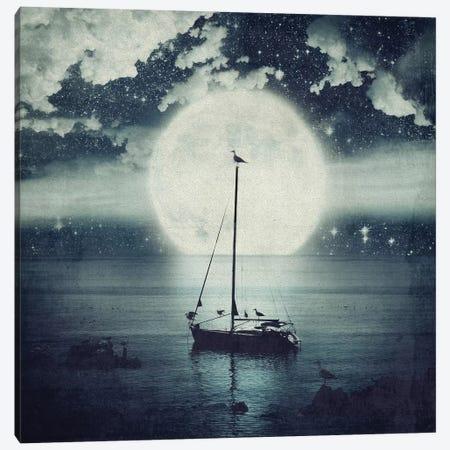 Starry Night Seascape Canvas Print #PBF46} by Paula Belle Flores Art Print
