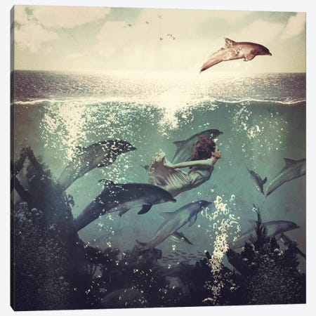 Swimming With My Dolphin Friends Canvas Print #PBF48} by Paula Belle Flores Canvas Art