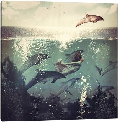 Swimming With My Dolphin Friends Canvas Art Print