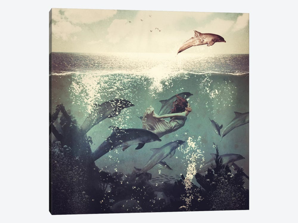 Swimming With My Dolphin Friends by Paula Belle Flores 1-piece Canvas Wall Art