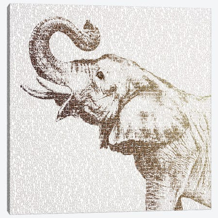 The Intellectual Elephant Canvas Print #PBF57} by Paula Belle Flores Canvas Artwork