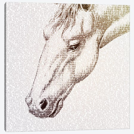 The Intellectual Horse I Canvas Print #PBF59} by Paula Belle Flores Canvas Print
