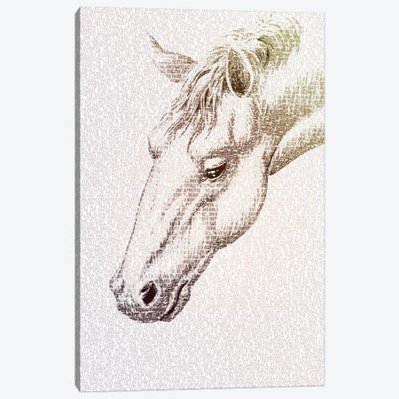 The Intellectual Horse II Canvas Print #PBF60} by Paula Belle Flores Canvas Art