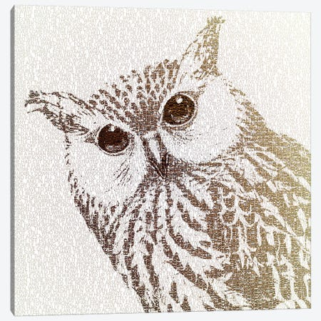 The Intellectual Owl I Canvas Print #PBF63} by Paula Belle Flores Canvas Artwork