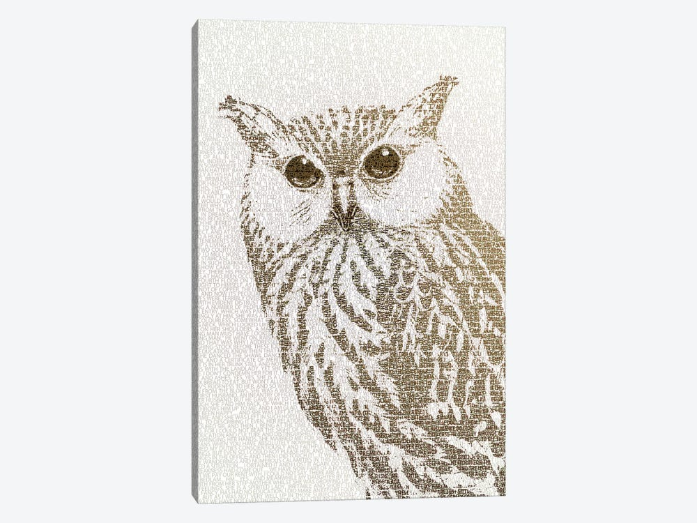 The Intellectual Owl II by Paula Belle Flores 1-piece Canvas Art