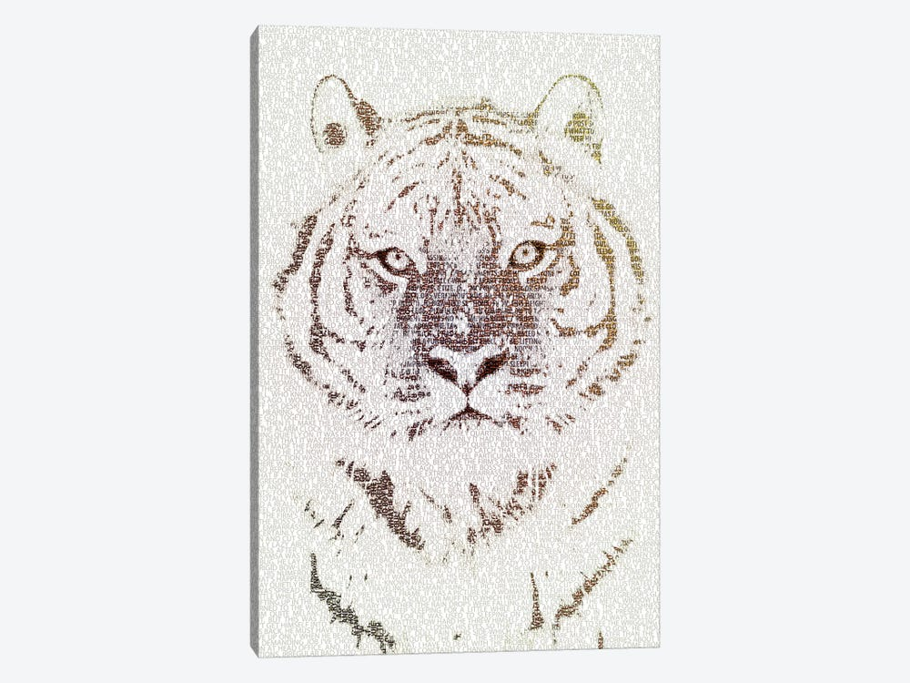 The Intellectual Tiger by Paula Belle Flores 1-piece Canvas Artwork