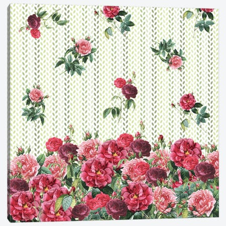 Decorative Vintage Roses Canvas Print #PBF6} by Paula Belle Flores Art Print