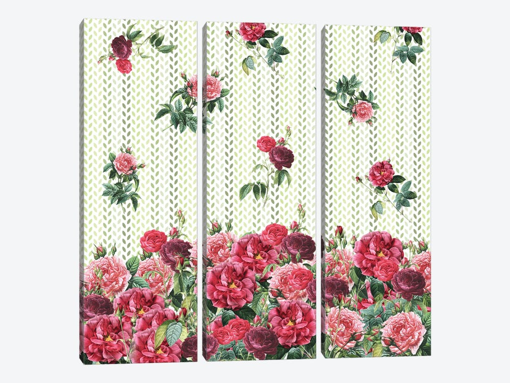 Decorative Vintage Roses by Paula Belle Flores 3-piece Canvas Artwork