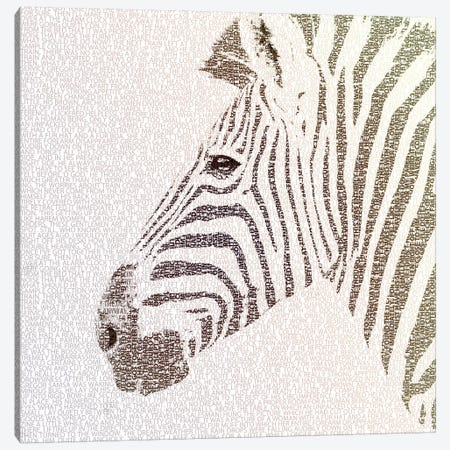 The Intellectual Zebra Canvas Print #PBF70} by Paula Belle Flores Canvas Art Print