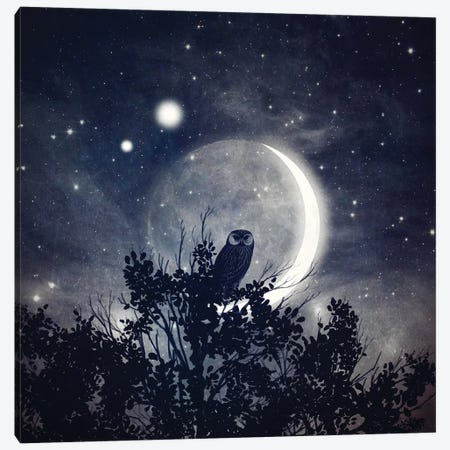 The Moon, Venus, & Jupiter Canvas Print #PBF72} by Paula Belle Flores Art Print