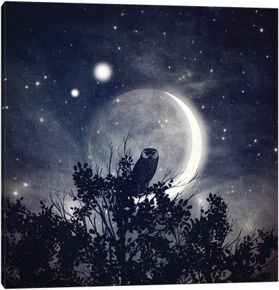 The Moon, Venus, & Jupiter Canvas Art Print