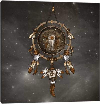 Dream Catcher Canvas Art Print