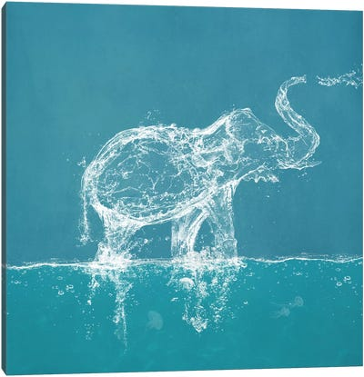 Water Elephant Canvas Art Print