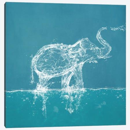 Water Elephant 3-Piece Canvas #PBF84} by Paula Belle Flores Canvas Art Print